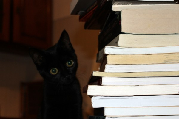 cat-books-black