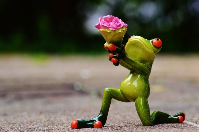 figurine-of-kneeling-frog-with-bouquet-on-street