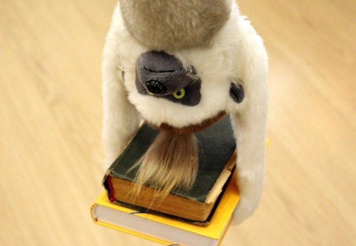 monkey-books-hang-conversely-acrobat-circus-rack
